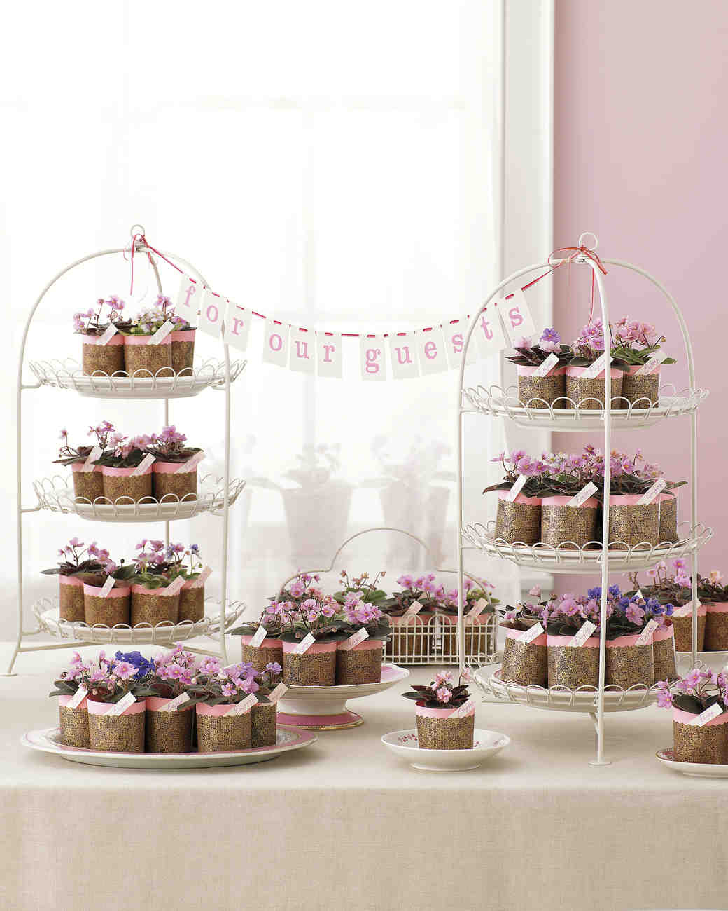 diy-bridal-shower-favors-african-violet-display-su07-0515.jpg