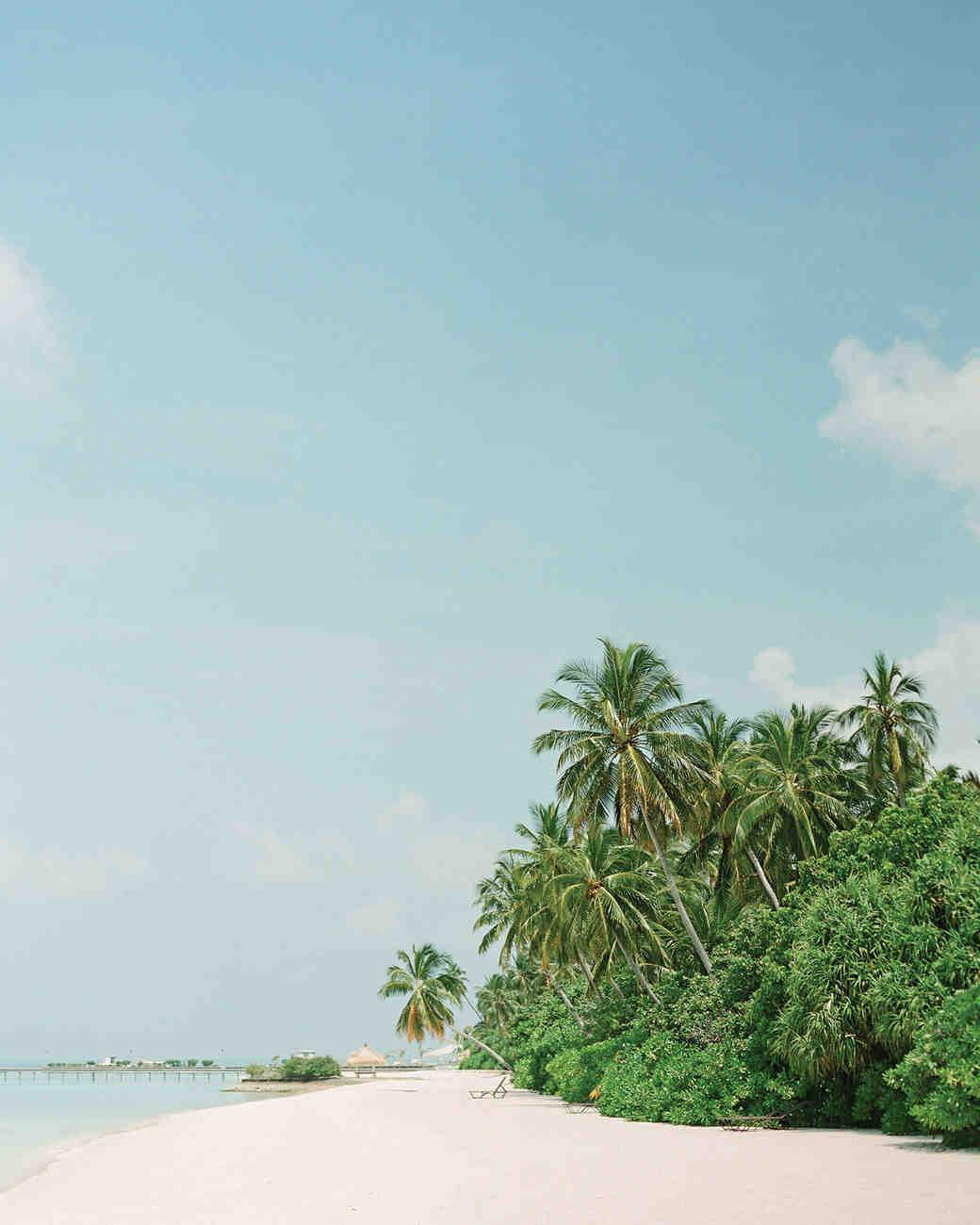 peony-richard-wedding-maldives-beach-palm-trees-1868-s112383.jpg