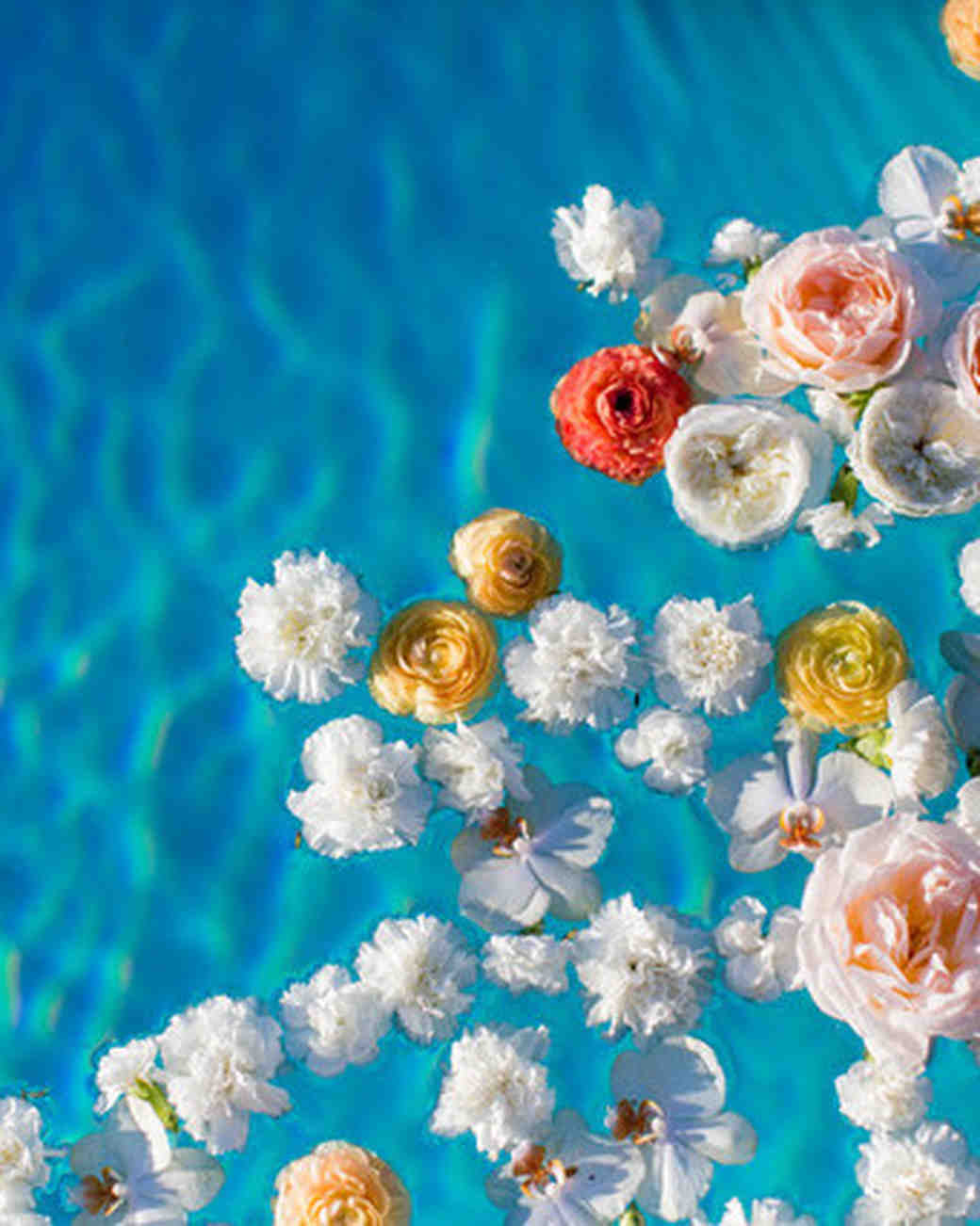 Flower Petals in a Pool