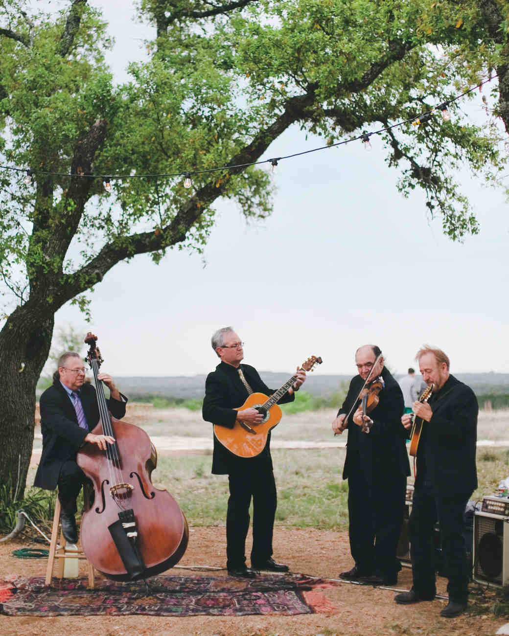 wedding-band-outdoor-musicians-winn-bowman-thenichols-378-mwds110732.jpg