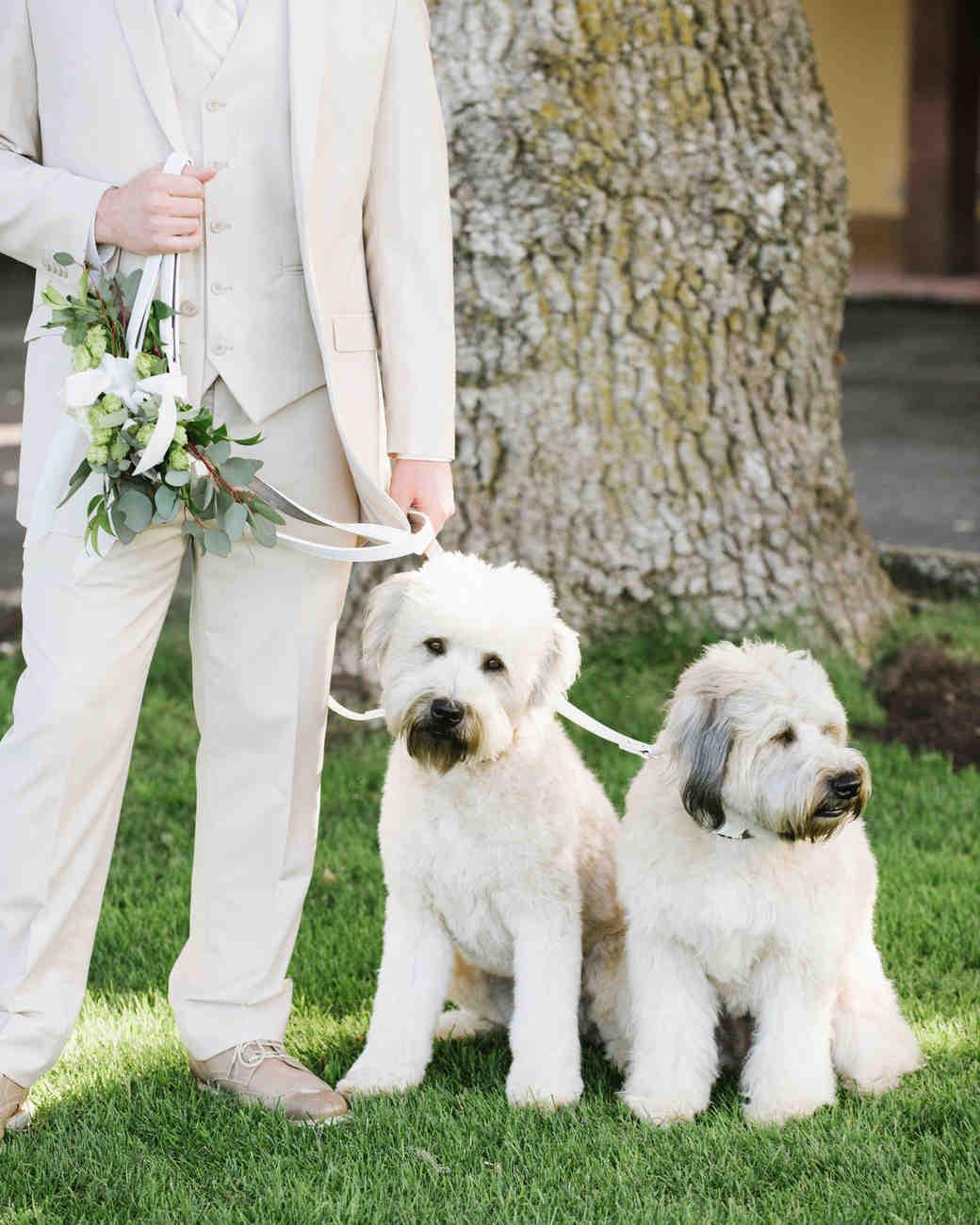 breelayne-hunter-wedding-california-0048-santa-lucia-preserve-fairy-woodsy-organic-dogs-s112849.jpg