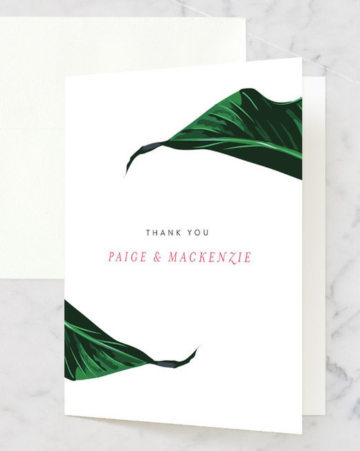 thank you notes minted mod palm