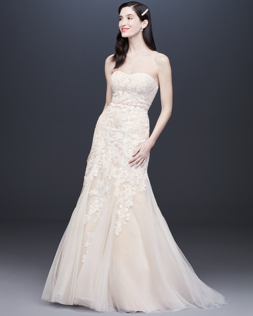 d14ca75e7e621 semi sweetheart lace tulle skirt mermaid wedding dress Davids Bridal Spring  2020
