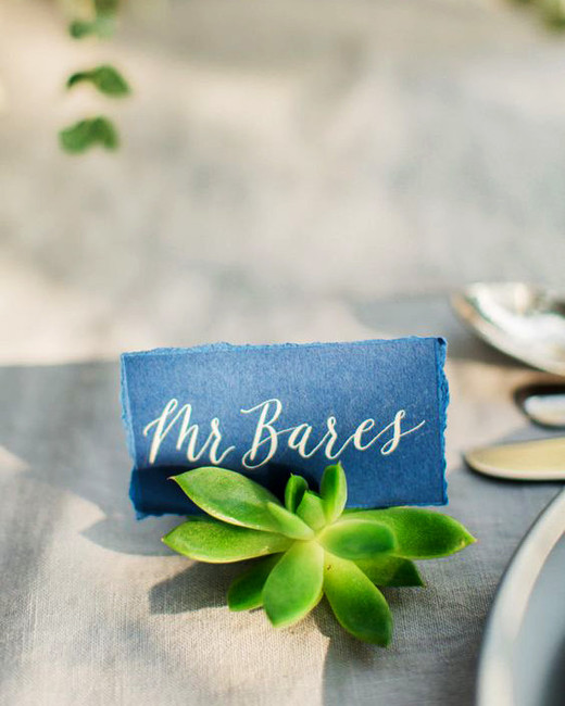 tiny succulents place card holder