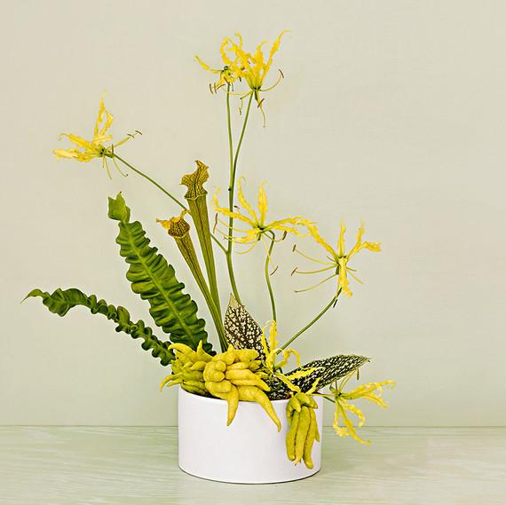 ikebana centerpiece with cobra lilies