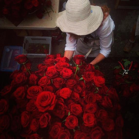 instagram-florists-flowerwild-0814.jpg