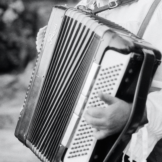 lisa louis wedding accordion