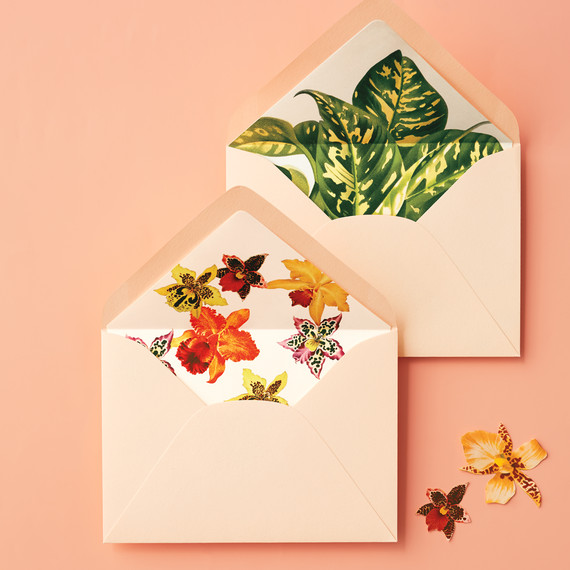 secret-source-paper-envelopes-206-d111826.jpg