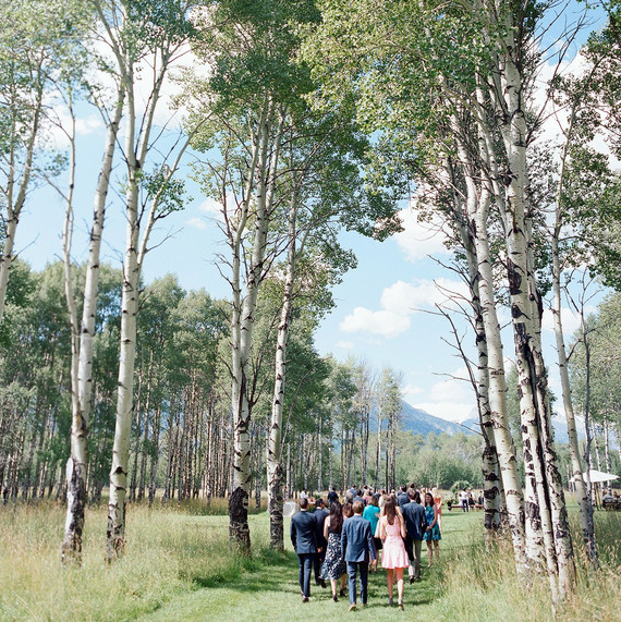 guests walking in woods